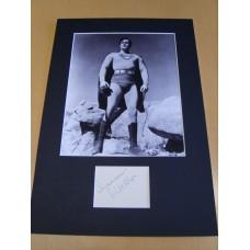 Kirk Alyn - Superman.
